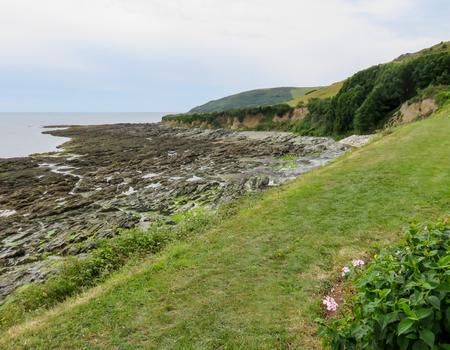 foreshore: Coastline Landscape with Foreshore