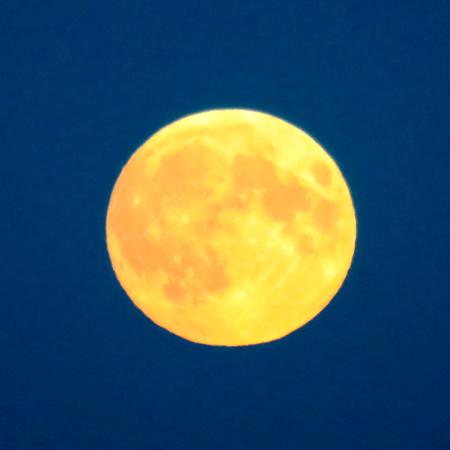 waning moon: Golden Moon Stock Photo