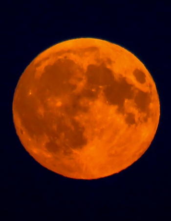 waxing gibbous: Orange Super Moon Stock Photo