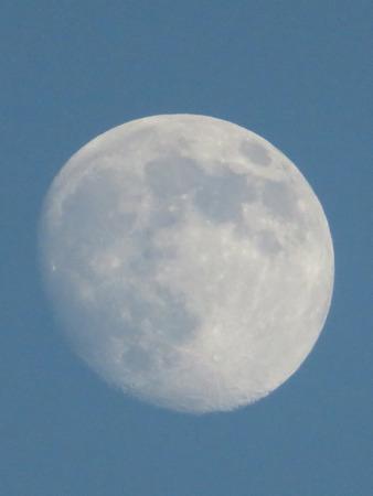 waning moon: Evening Moon Stock Photo