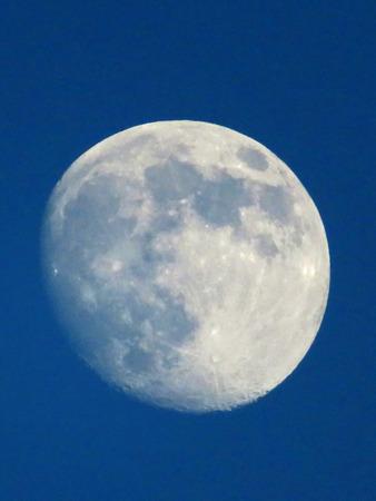 waning moon: Moon at Dusk Stock Photo