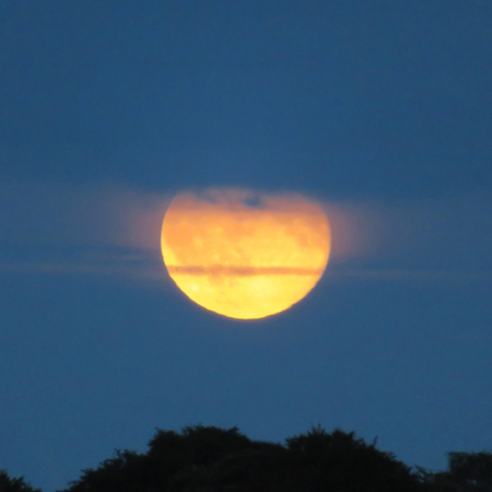waning moon: Orange Moon Rising At Dusk Behind The Clouds Stock Photo