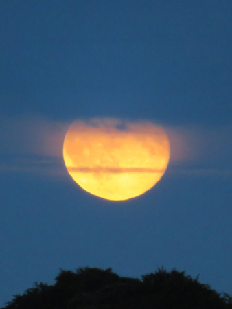 Orange Moon Rising At Dusk Behind The Clouds Stock Photo