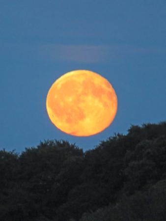waning moon: Rising Orange Full Moon