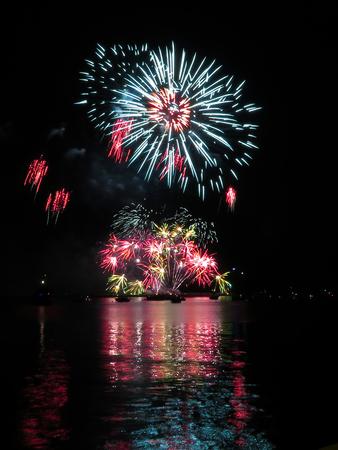 showy: Showy Firework Burst