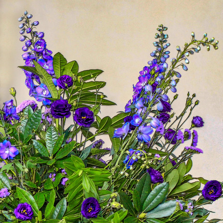 Delphiniums Blue Floral Arrangement Stock Photo