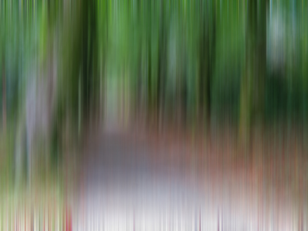Abstract Tree Avenue Stock Photo