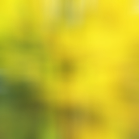 Yellow Nature Abstract Stock Photo