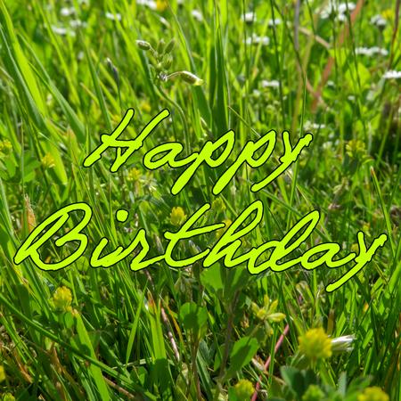 Happy Birthday Green Grass Stock Photo