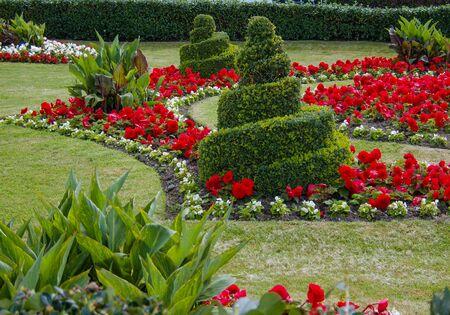 Swirls Topiary In Garden