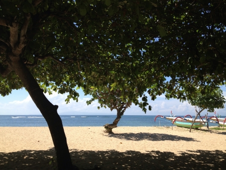 sanur: Shadows under the trees very rare in this side of the island on Sanur Beach Bali.