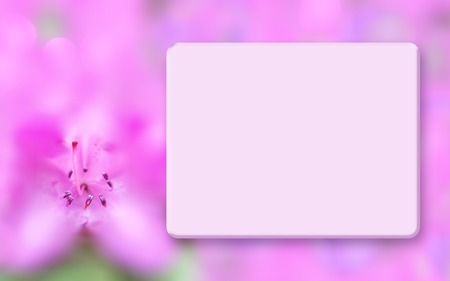 Mock up border with pink azalea, light box and blurred bokeh background, soft focus, macro. Spring, summer floral background. Template for greeting cards, postcards, scrapbooking, photo albums, web sites, posters, flyers, booklets Stock Photo