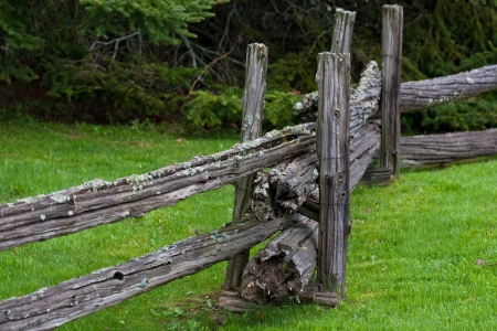 Old weathered fence posts and rails against a background of lawn and trees Stock Photo - 14019680
