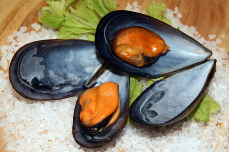 mussels: boiled mussels