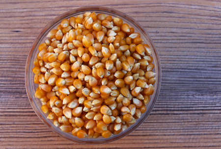 zea mays: Grains of corn (Zea mays)