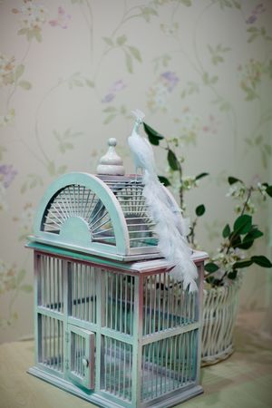 White bird with long feathers sitting on an oldfashioned birdcage, wallpaper with flowers in the background; selective focus on tail feathers. photo