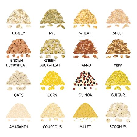 Set of hand drawn vector handful of grains and cereals. Barley, wheat, buckwheat, oats, corn, quinoa, millet, bulgur. Organic healthy food. Vegan and vegetarian poster. Hand drawn vector illustration