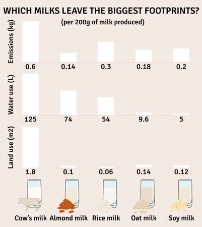 The impact of milk types on the environment. Milk infographic. Dairy, almond, soy, rice, oat milk. Water use, greenhouse emission. Footprints from milk. Hand drawn vector illustration.