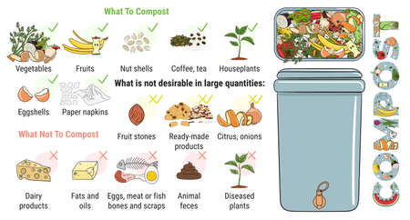 Infographic of composting bin with kitchen scraps. What to or not to compost. No food wasted. Recycling organic waste, compost. Sustainable living, zero waste concept. Hand drawn vector illustration.