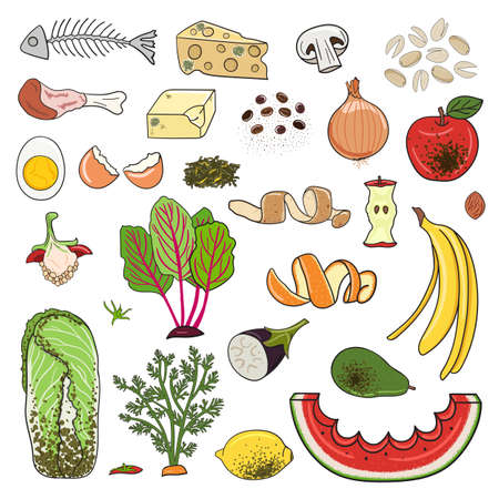 Set of organic waste - fruits, eggshell, vegetables, food leftovers. Recycling organic waste. Compost concept. Farming and agriculture. Hand drawn vector illustration.