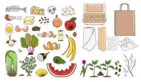 Set of organic waste - fruits, eggshell, vegetables, food leftovers, paper, garden greens. Recycling organic waste. Compost concept. Farming and agriculture. Hand drawn vector illustration. Vektorové ilustrace