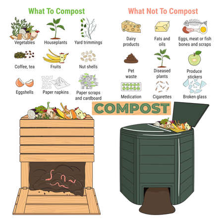 Infographic of garden composting bin with scraps. What to or not to compost. No food wasted. Recycling organic waste, compost. Sustainable living, zero waste concept. Hand drawn vector illustration.