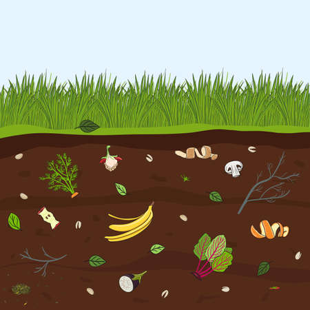 Ground cutaway with food scraps. Recycling organic waste. Farming and agriculture. Hand drawn vector illustration.