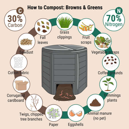 Infographic of garden composting bin with scraps. What to compost. Green and brawn ratio for composting. Recycling organic waste. Sustainable living concept. Hand drawn vector illustration.