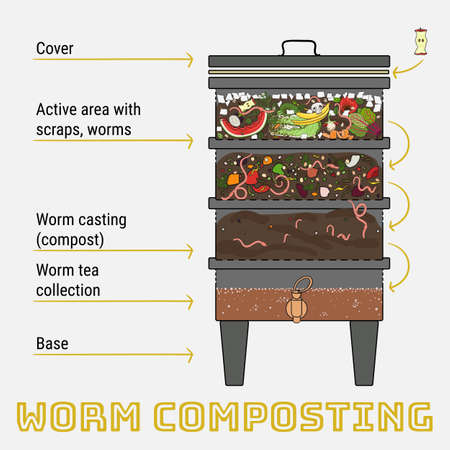 Infographic of vermicomposting. Components of vermicomposter. Vermicomposter schematic design. Worm composting. Recycling organic waste, fertilizer organic. Hand drawn vector illustration.