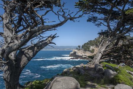 monterey: Monterey Coast