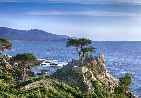 Lone Cypress - 17 mile drive. This is the famous lone cypress in Pebble Beach. Taken on a Sunny Spring day.