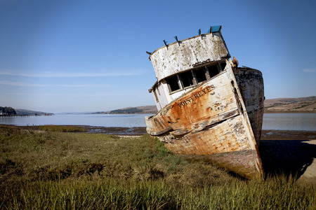 This is the famous Point Reyes scooner that was beached many years ago.