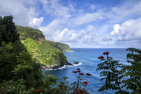 Hana Road is a long, winding which start in Kahului, Hi and ends in Hana, Hi on the island of Maui. The road feature beautiful waterfall, spectacular ocean scenes, and gorgeous flowers. Reklamní fotografie