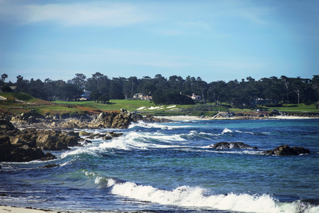 An image taken along 17 mile drive famous coast line on a bright Winter day.