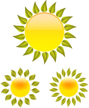Set of glossy suns with leaves. Vector illustration Vector