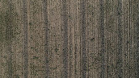 Crop field winter background aerial drone shot orthophoto