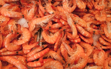 Shrimps. The fish market Stock Photo