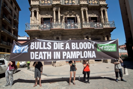 savagery: PAMPLONA, SPAIN - JULY 5  People protesting against cruelty to animals at San Fermin festival  Plaza in front of municipality  Pamplona, Navarra, Spain July 5, 2013  Editorial