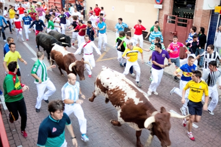MADRID SUBURB OF SAN SEBASTIAN DE LOS REYES - SEPTEMBER 29 : Men run from the bulls on the street of San Sebastian de los Reyes during festival, Spain 2013. Fiesta called 'little Pamplona'