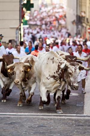 パンプローナ、スペイン-7 月 9: ブルズ 2013 年 7 月 9 日にスペイン、パンプローナのサンフェルミン祭の間に通りで実行されています。
