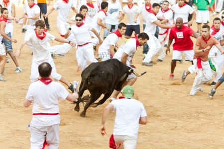 PAMPLONA, SPAIN - JULY 10: People having fun with young bulls at San Fermin festival. Pamplona, Navarra, Spain 10 July 2013.