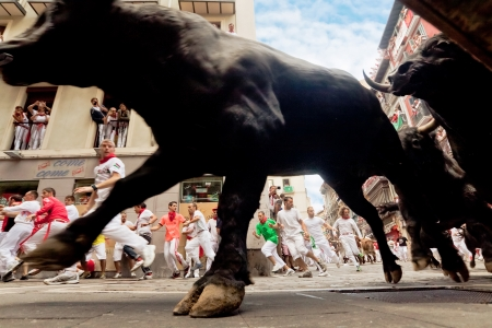 navarra: PAMPLONA, SPAIN-JULY 13: Bulls and people are running in street during San Fermin festival in Pamplona, Spain on July 13, 2013.