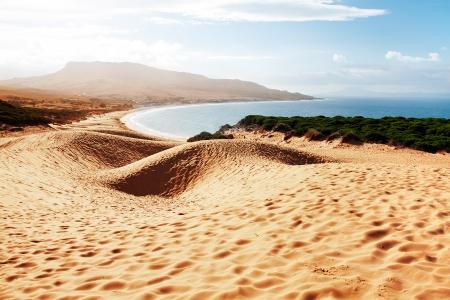 tarifa: Sand dune of Bolonia beach, province Cadiz, Andalucia, Spine