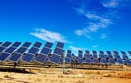 plantas del desierto: sistema de paneles solares Foto de archivo