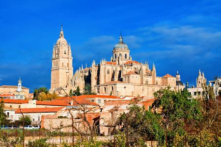 Salamanca Cathedral. Castile and Leon, Spain Standard-Bild