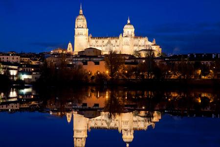salamanca: Salamanca Cathedral. Castile and Leon, Spain Stock Photo