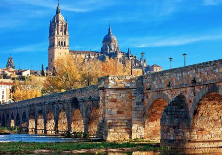 castile leon: Salamanca Cathedral. Castile and Leon, Spain Stock Photo