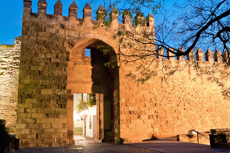 alcazar: Gate of Alcazar of Cordoba in winter evening. Spain