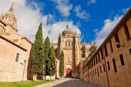 castile and leon: Salamanca Cathedral. Castile and Leon, Spain Stock Photo