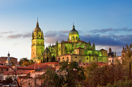 castile leon: Salamanca Cathedral. Castile and Leon, Spain Stock Photo